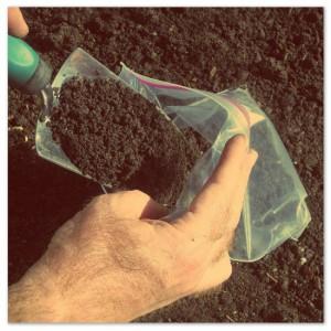 Soil Testing Sample