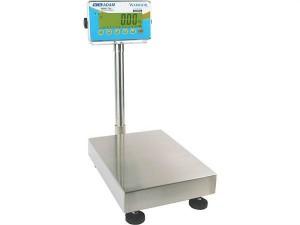 Warrior Scales